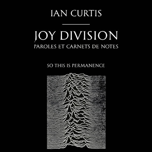 Joy Division So This Is Permanence – Ian Curtis