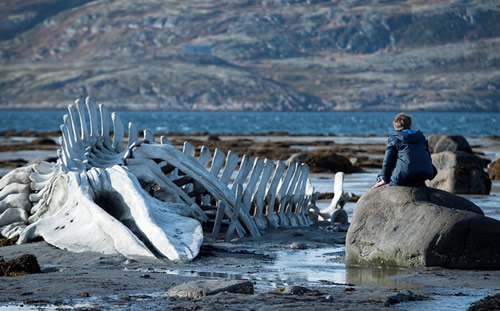 «Leviathan», une tyrannie russe
