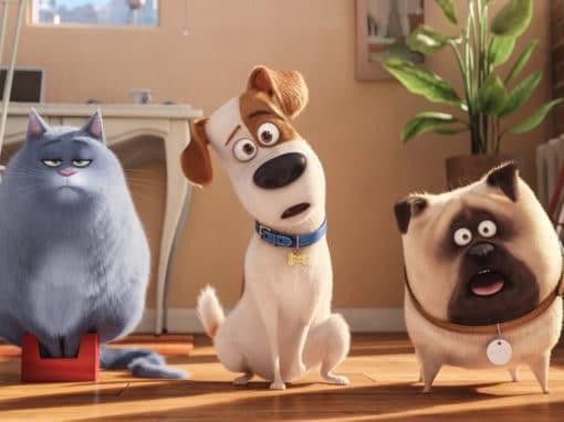 """""""Comme des bêtes"""", chacun cherche ses chiens"""
